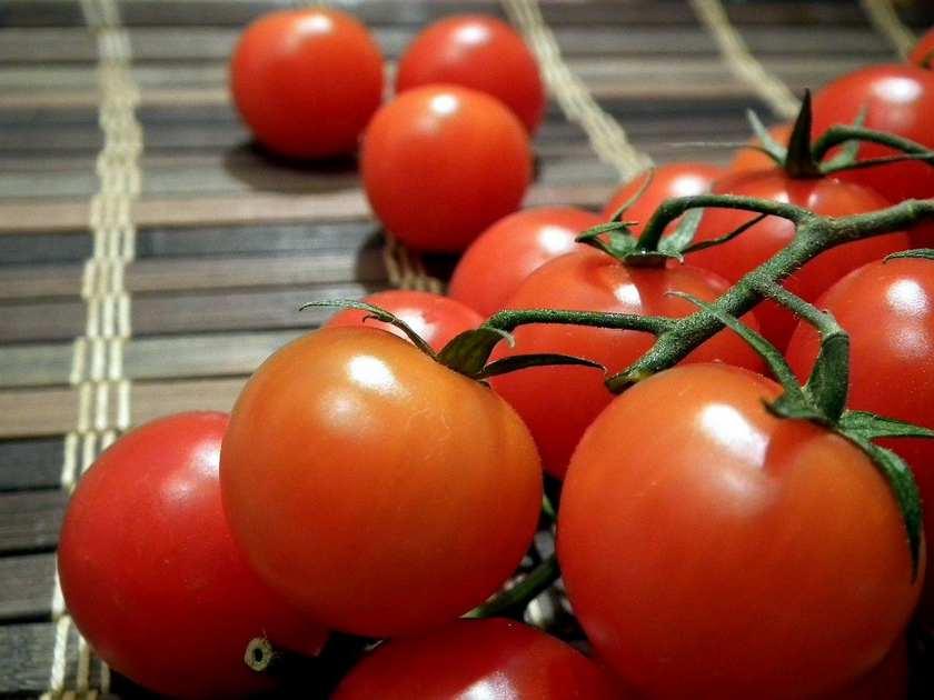Красные спелые томаты на веточке